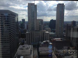 ALA Chicago View   www.patriciabaileyauthor.com