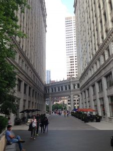 ALA | Downtown Chicago | www,patriciabaileyauthor.com