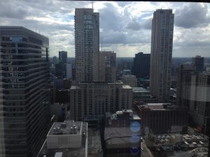 ALA Chicago View | www.patriciabaileyauthor.com